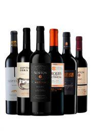 Pack Malbec Premium x 6 vinos