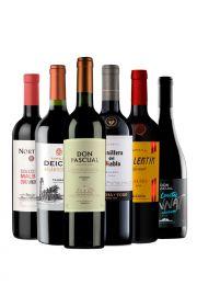 Pack Tannat y Malbec x 6 vinos