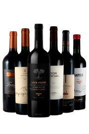 Mix vinos x6 variedades