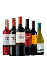 Pack 6 vinos Chilenos