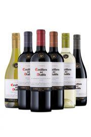 Pack Curso Ecnology + 6 vinos Casillero del Diablo